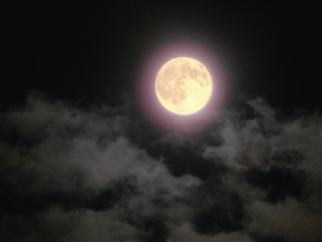 満月の前に、ジャッジメントを手放す極意